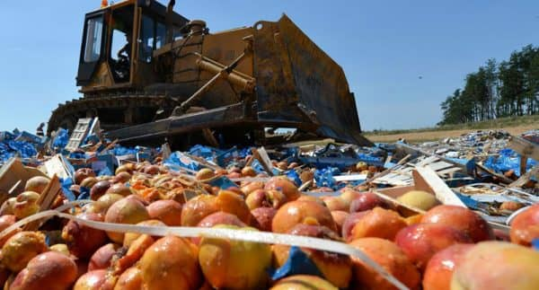 уничтожение продуктов в России