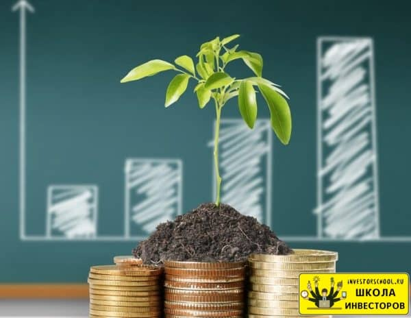 через вывоз прямых инвестиций инвесторы