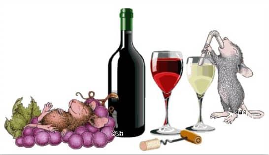 winevswater