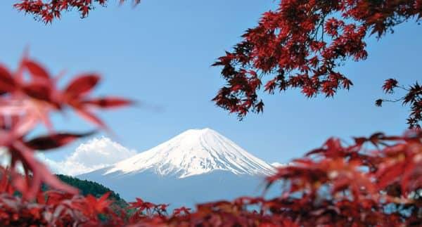 Япония 2017